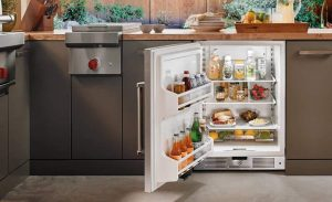 Top 21 Quietest Undercounter Refrigerator: Best Products On The Market 2021